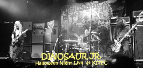 dinosaurjr-wordpress1