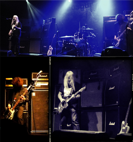dinosaurjr-wordpress3
